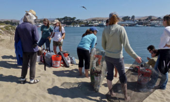 The Environment Needs You: Coastal Cleanup Day