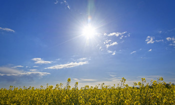 7 Ways Solar Energy Can Help Power Your New Year